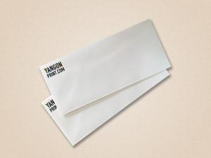 DL Envelope (9 x 4.2 in)